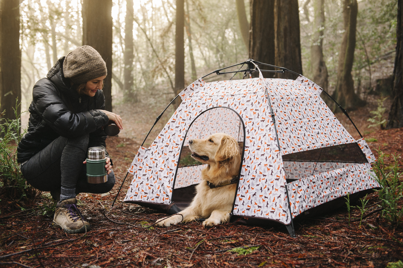 Advantages of Having a Dog Tent