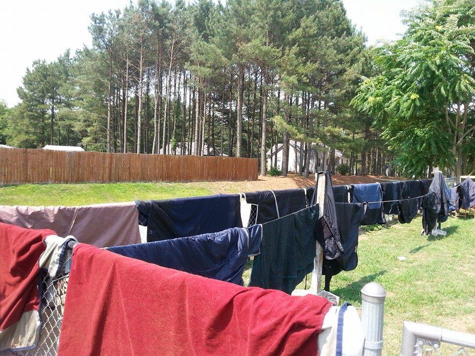 horse blankets drying on fense
